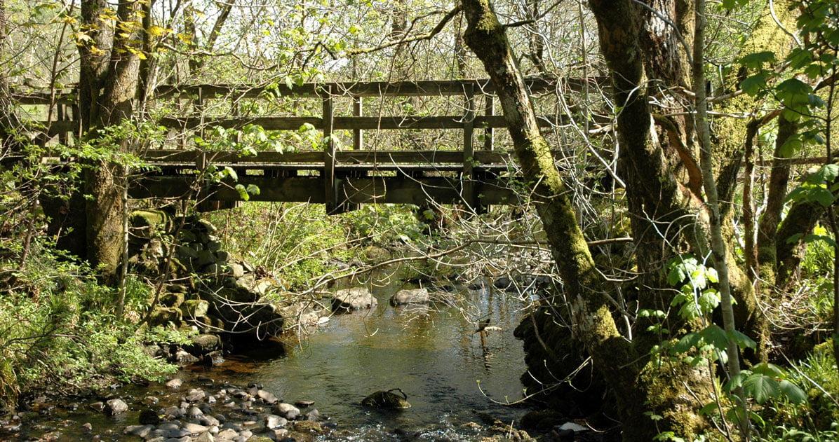 Waterside Hill Bridge